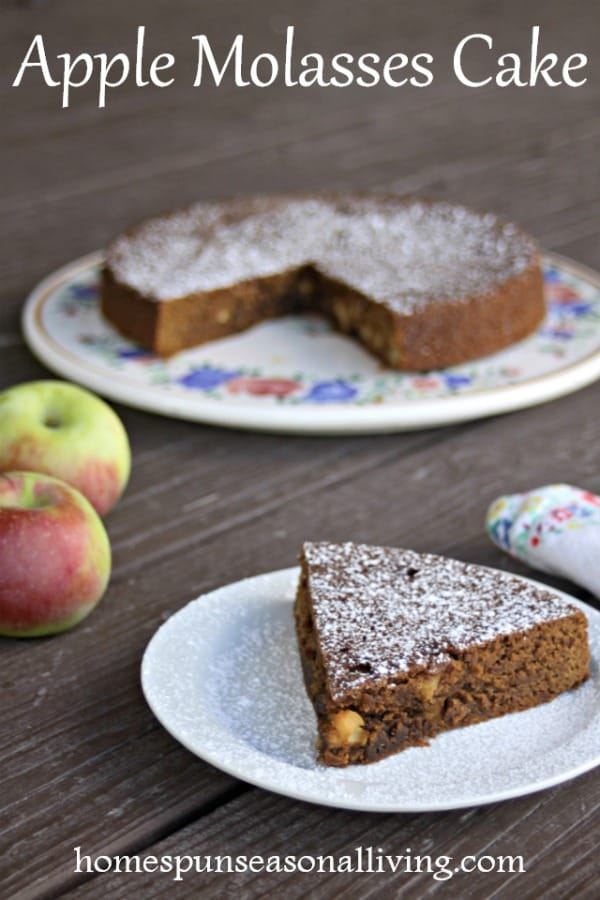 A slice of apple molasses cake with fresh apples and powdered sugar.