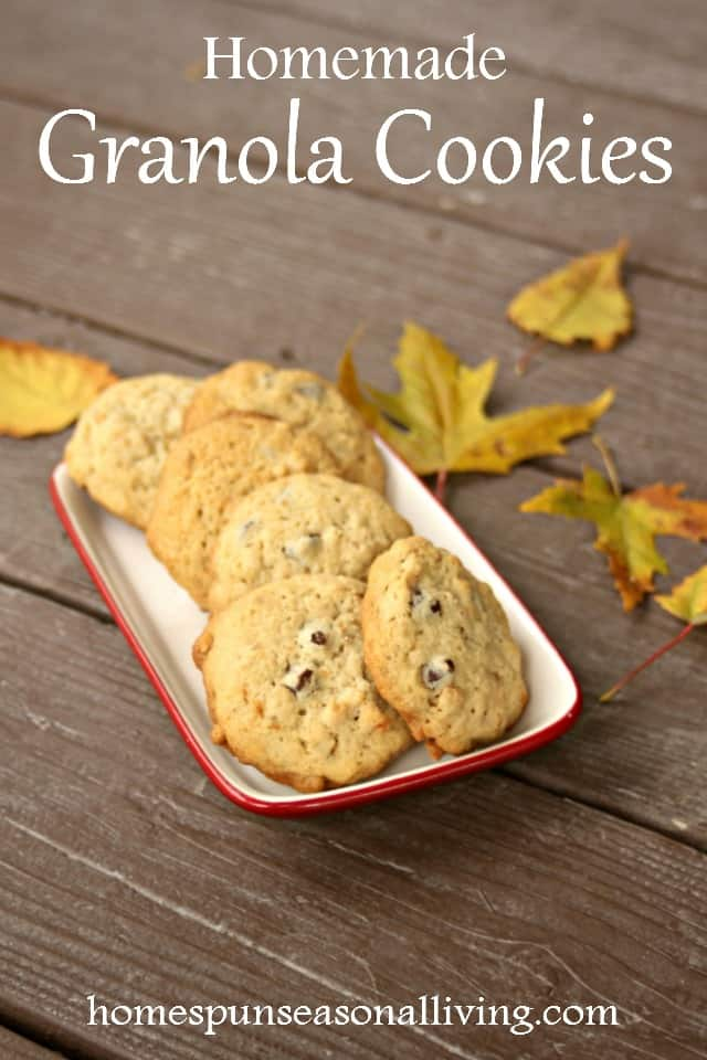 For a tasty dessert that is as at home on the trail as they are on the buffet table, bake up some of these easy and hearty granola cookies.