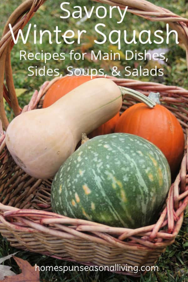 A variety of winter squashes in a basket with text overlay.
