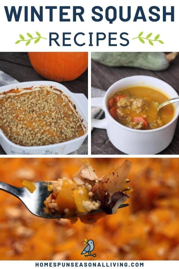 Photos of winter squash recipes with text overlay.