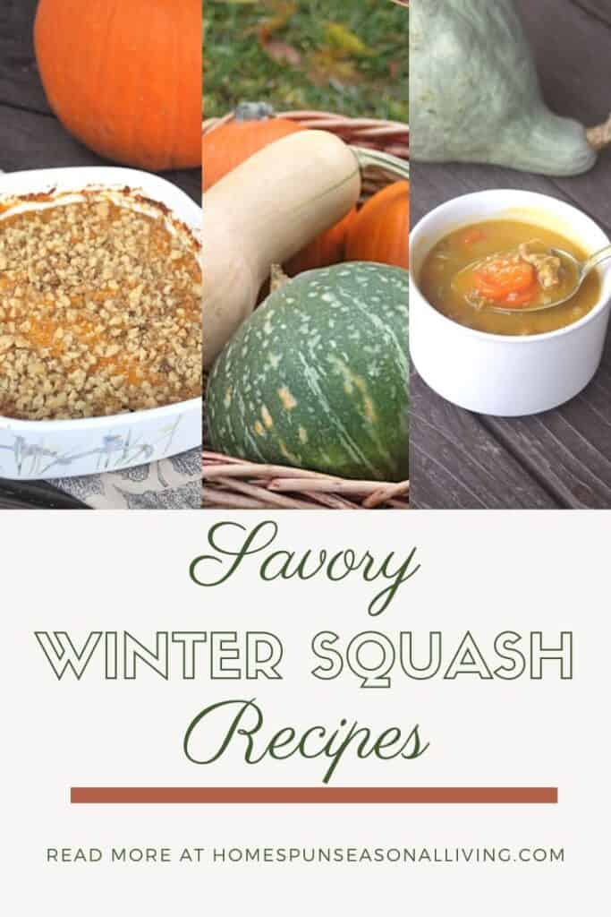 3 photos of winter squash lined up above text overlay.