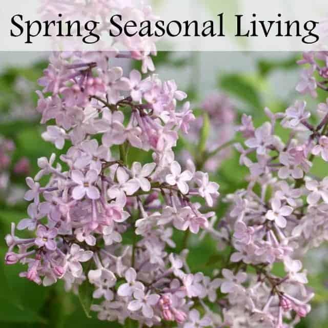 Spring Seasonal Living E-Course
