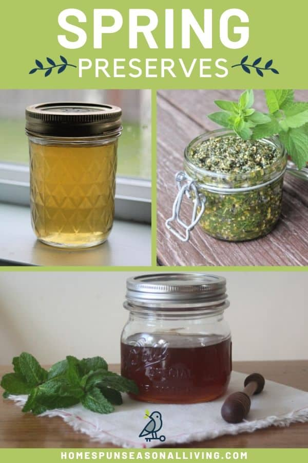 A collage of photos with a jar of dandelion jelly, pesto, and mint infused honey with text overlay.