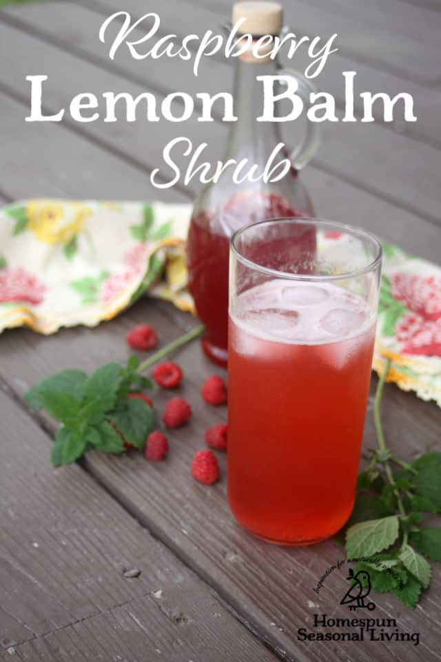 A glass of raspberry lemon balm shrub surrounded by berries and herbs.