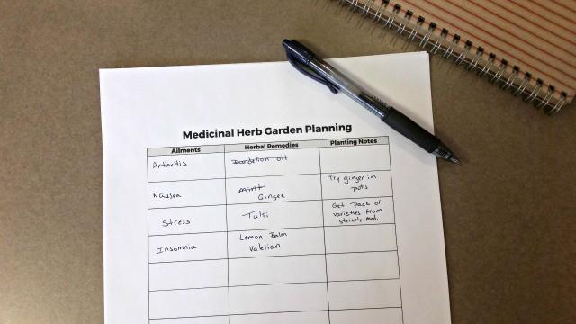 How to Plant a Medicinal Herb Garden – Medicinal Herb Garden Plan