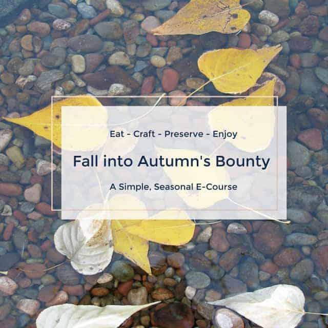 Fall into Autumn's Bounty