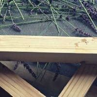 Make an Herb and Flower Drying Screen
