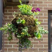 Hanging Globe Planter