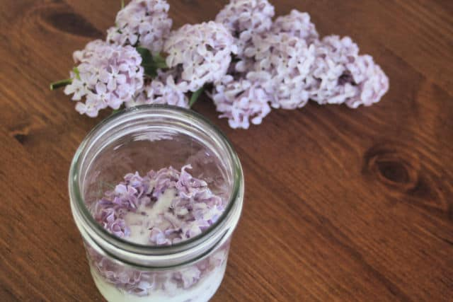 A jar of sugar and lilac blossoms sitting on a table.