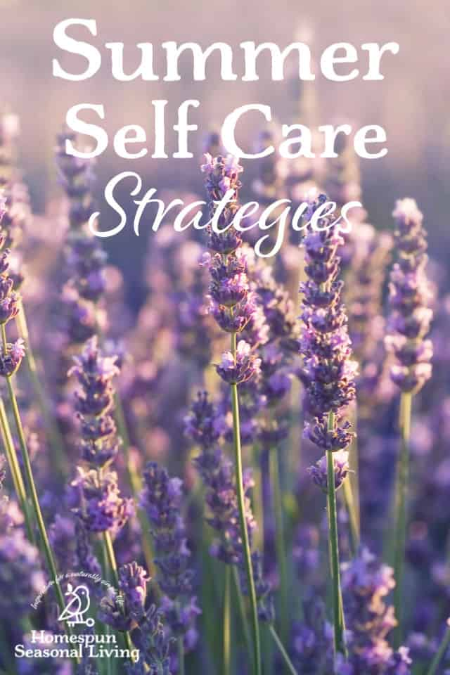 A photo of lavender growing in a field with text overlay reading: Summer Self Care Strategies.