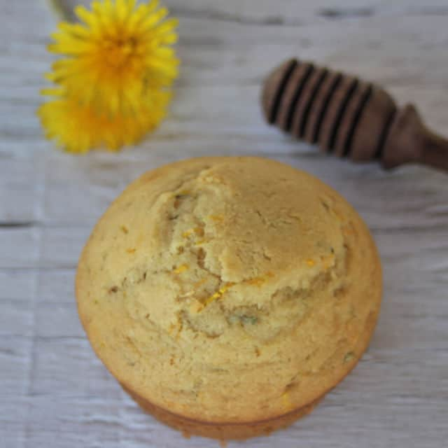 Close up of the top of a dandelion muffin with a honey dipper and dandelion flowers on the table next to it.