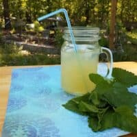 Honey-Sweetened Lemon Balm Lemonade