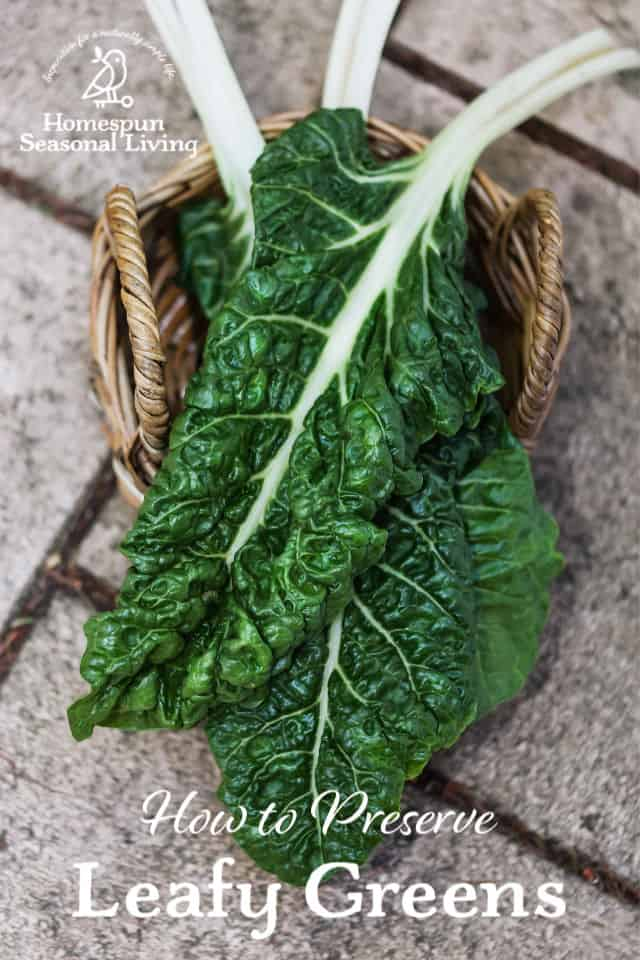 A basket of beet greens with text overlay.