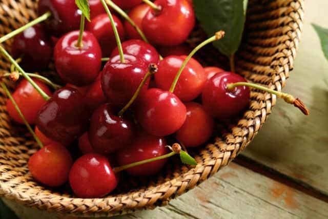 A basket full of fresh sour cherries