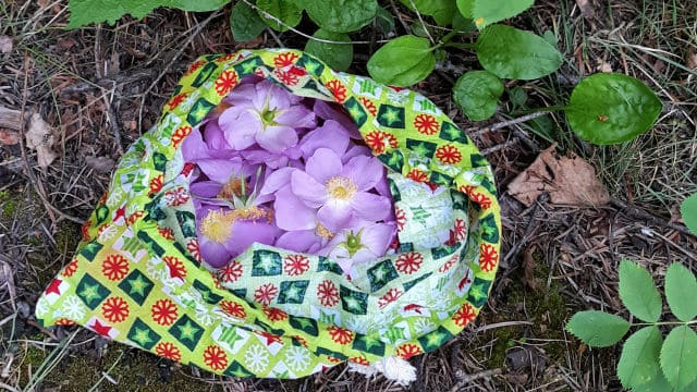 Wild roses in a cloth drawstring bag on the forest floor.