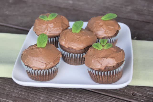 Mint chocolate cupcakes on a platter on top of a green runner.