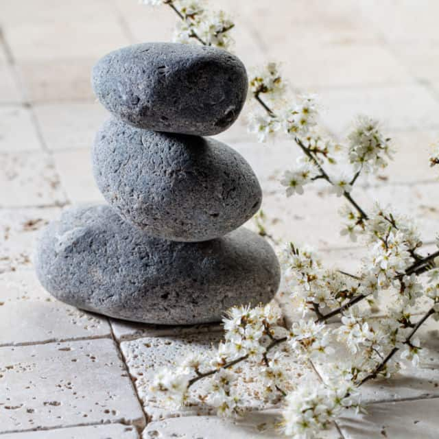 A stack of balanced rocks sitting next to a stem of flowers.