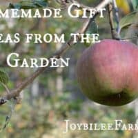Apple Pie Chai Jelly recipe