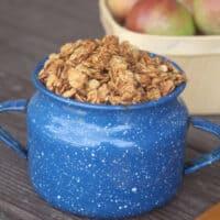 Applesauce Peanut Butter Granola