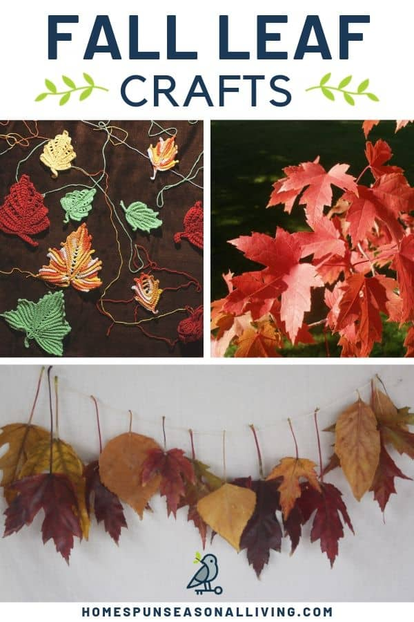 A collage of photos depicting fall leaves, a fall leaf garland, and knitted fall leaves with text overlay.