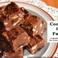 Coconut Oil Fudge - Easy, Delicious, No Cooking Required!