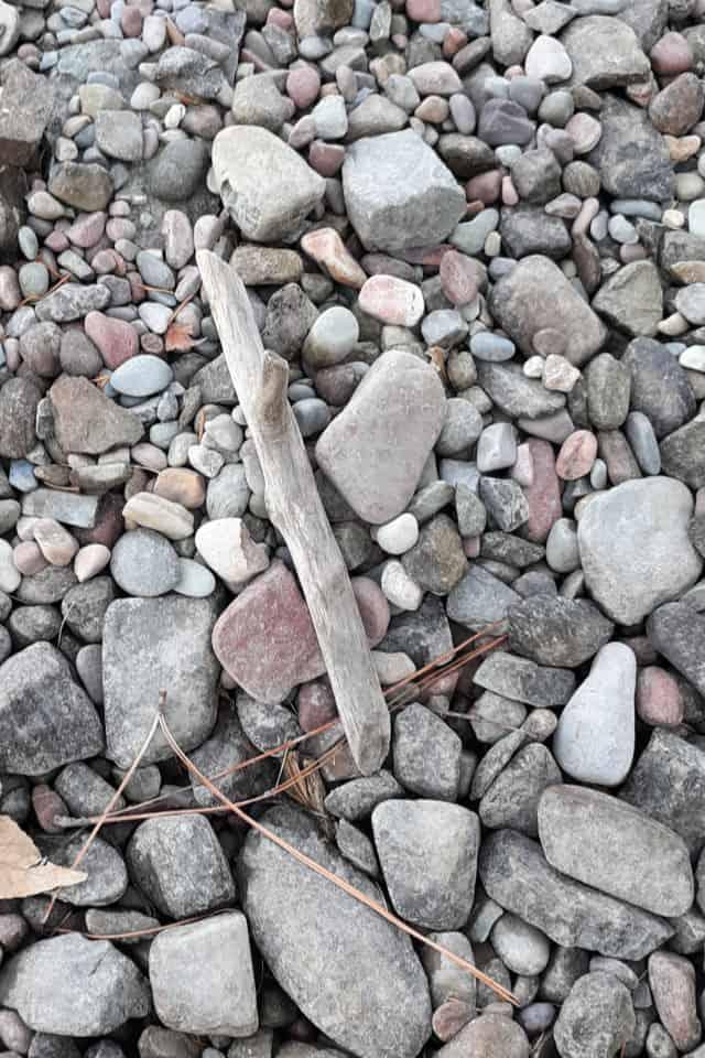 A piece of driftwood on a rocky beach.