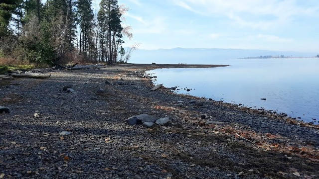 A rocky shoreline with lake and mountains in the distance.