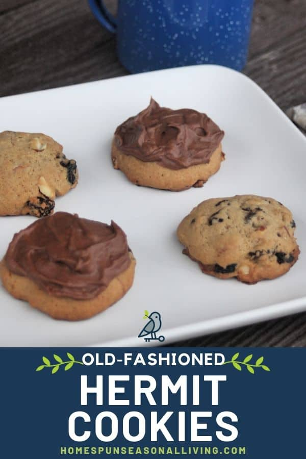 Hermit cookies on a plate with text overlay.