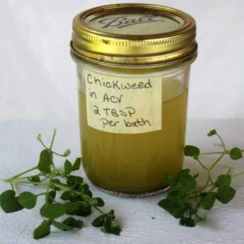 A labeled jar of chickweed bath vinegar on a white table surrounded by stems of fresh chickweed.
