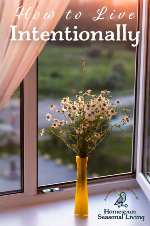 A vase filled with daisies on a windowsill and text overlay.
