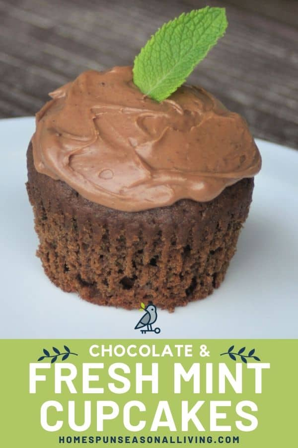 A frosted mint chocolate cupcake on a white plate with text overlay.