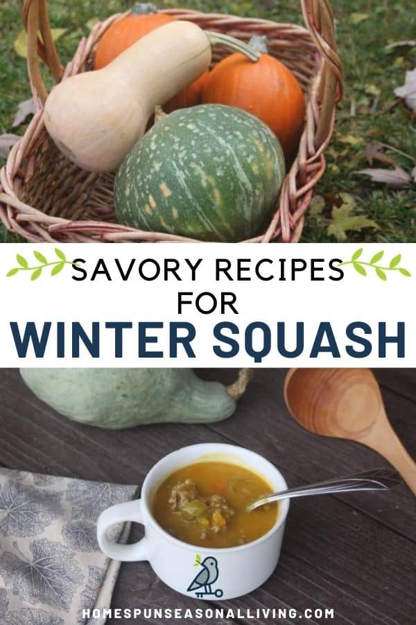 A stack of graphics with a photo of a basket of winter squash on top, text overlay in the middle, and a white cup of hubbard squash soup on the bottom.