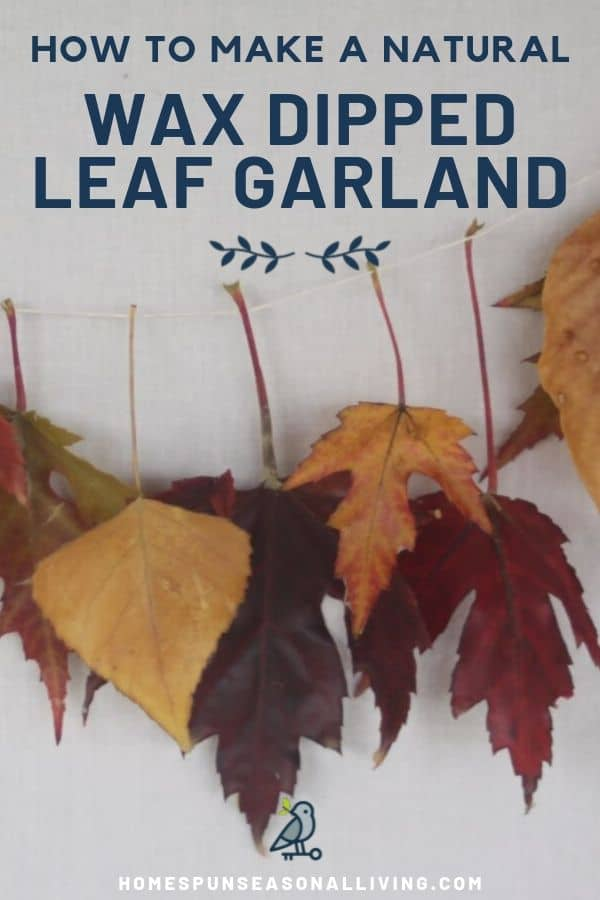 A Strand of multi-colored leaves that have been dipped in beewax and strung together with thread against a white wall with text overlay stating: how to make a natural wax dipped leaf garland.