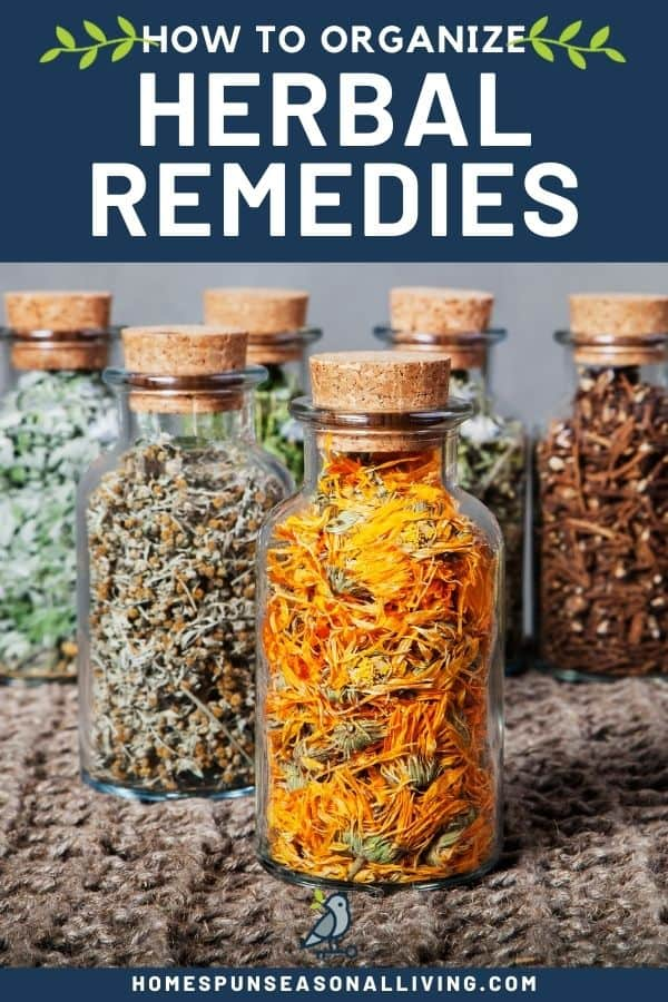 Glass jars with cork stoppers full of dried herbs with text overlay stating: how to organize herbal remedies.