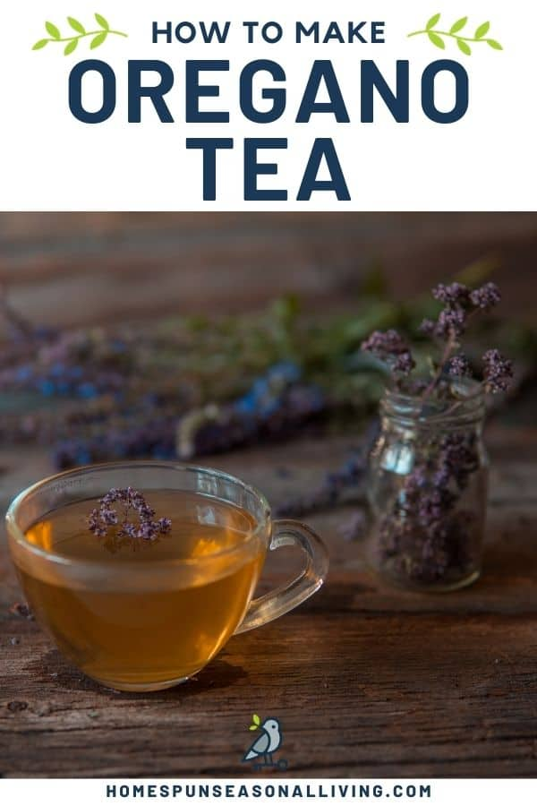 A clear cup full of herbal tea with glass vase full of dried oregano flowers in the background with text overlay reading how to make oregano tea.