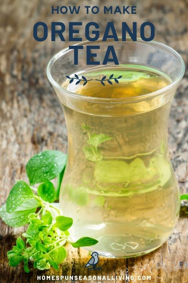 A glass full of light colored tea with a sprig of fresh oregano sitting to the side of it with text overlay reading how to make oregano tea.