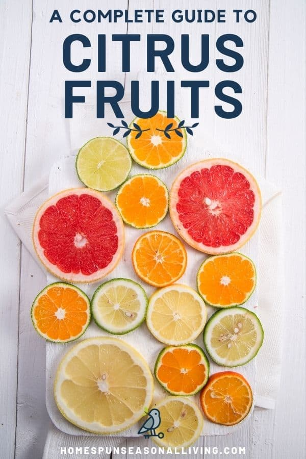 A variety of citrus fruit slices on a board with text overlay stating: a complete guide to citrus fruits.
