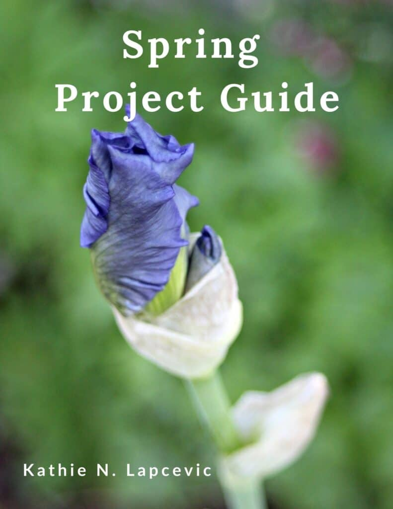 A purple iris bud in front of green garden background with words Spring Project Guide in white above the bud.