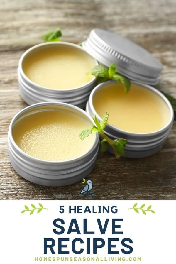 Round metal tins without lids exposing the salves inside with text overlay stating: 5 healing salve recipes.