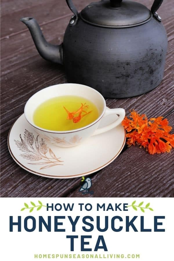 A teacup full of honeysuckle tea with orange blossoms floating on top, sitting on a saucer, fresh honeysuckle blossoms sitting to the right of the saucer, and a teapot behind. A white text block at the bottom stating: how to make honeysuckle tea.