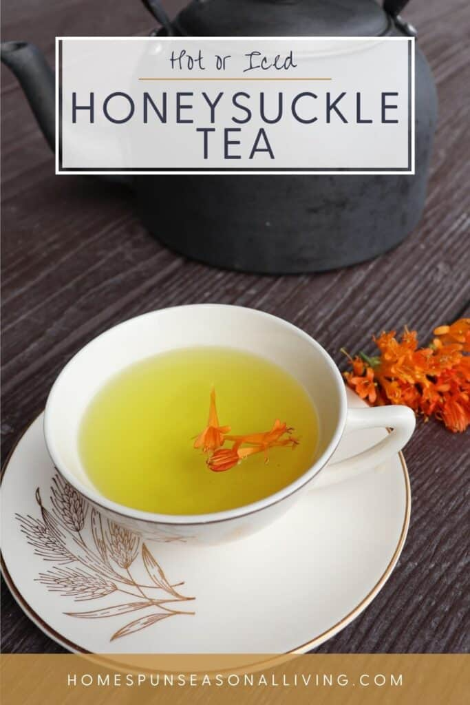 A teacup full of honeysuckle tea with orange blossoms floating on top, sitting on a saucer, fresh honeysuckle blossoms sitting to the right of the saucer, and a teapot behind. with text overlay reading hot or iced honeysuckle tea.