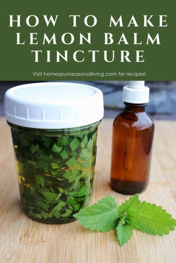 A canning jar full of chopped leaves submerged in liquid sitting next to a brown dropper bottle with fresh lemon balm leaves on the table with text overlay reading how to make lemon balm tincture.