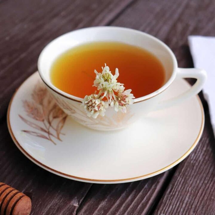A teacup filled with tea sitting on a saucer, white clover flowers floating in the tea.