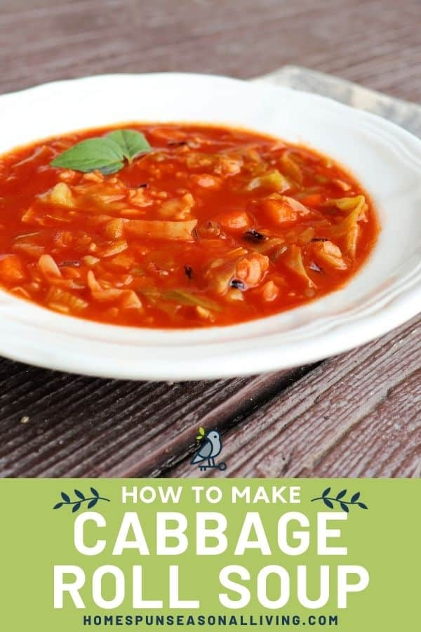A white bowl full of vegetable soup in red broth with text overlay stating: how to make cabbage roll soup.