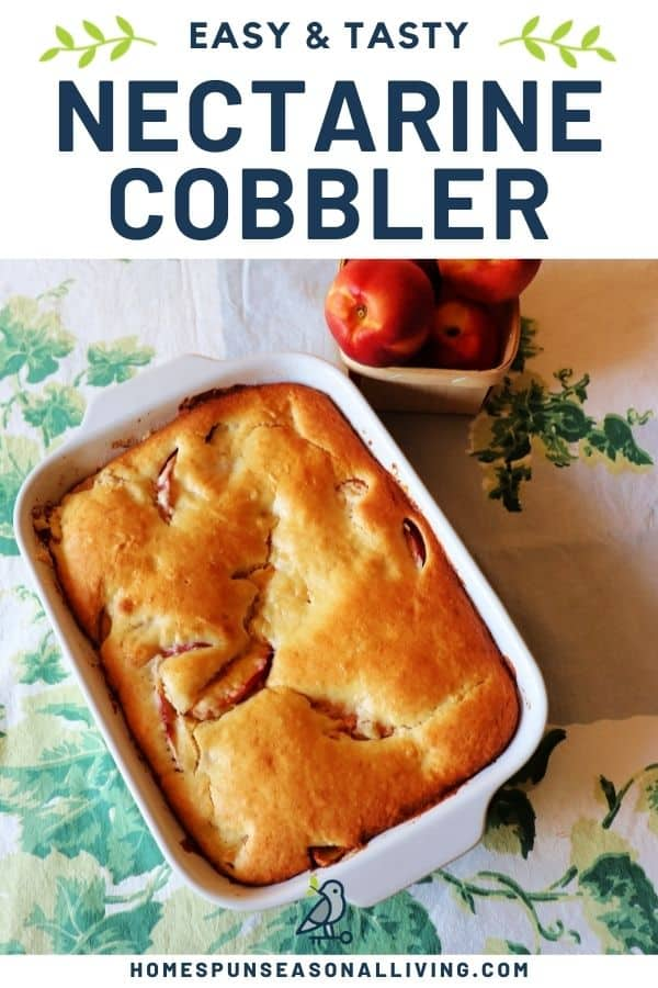 A pan of nectarine cobbler as seen from above sitting on a green and white table cloth with a basket of fresh of nectarines and a text overlay reading: easy & tasty nectarine cobbler.